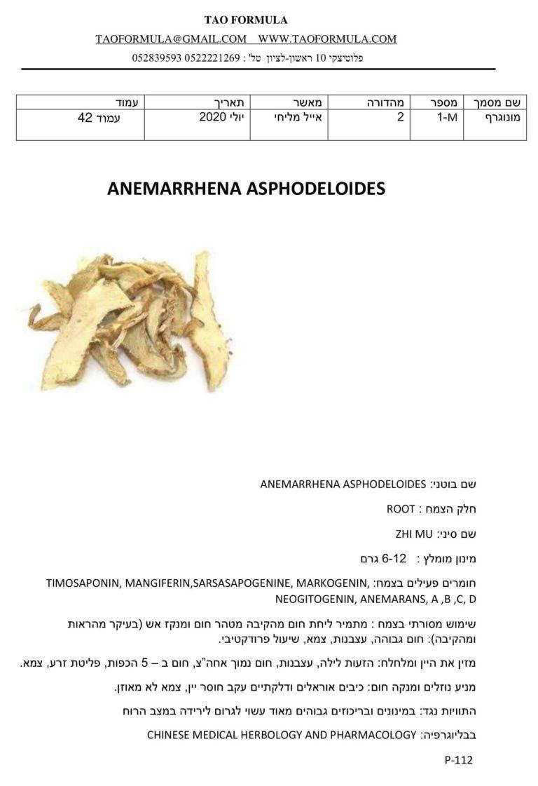 ANEMARRHENA ASPHODELOIDES 1