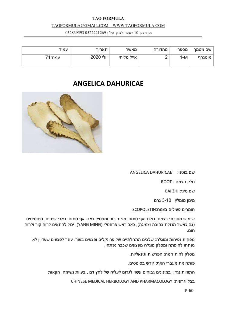 ANGELICA DAHURICAE 1