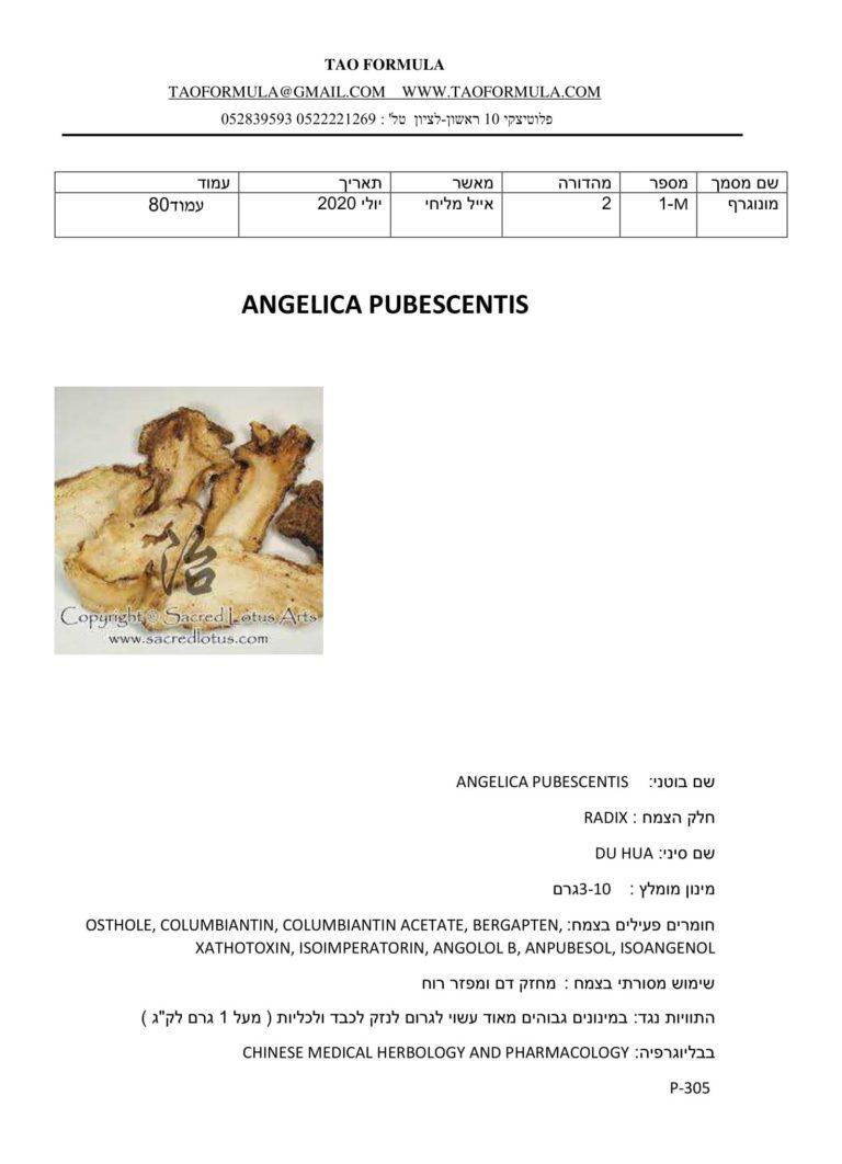 ANGELICA PUBESCENTIS 1 1
