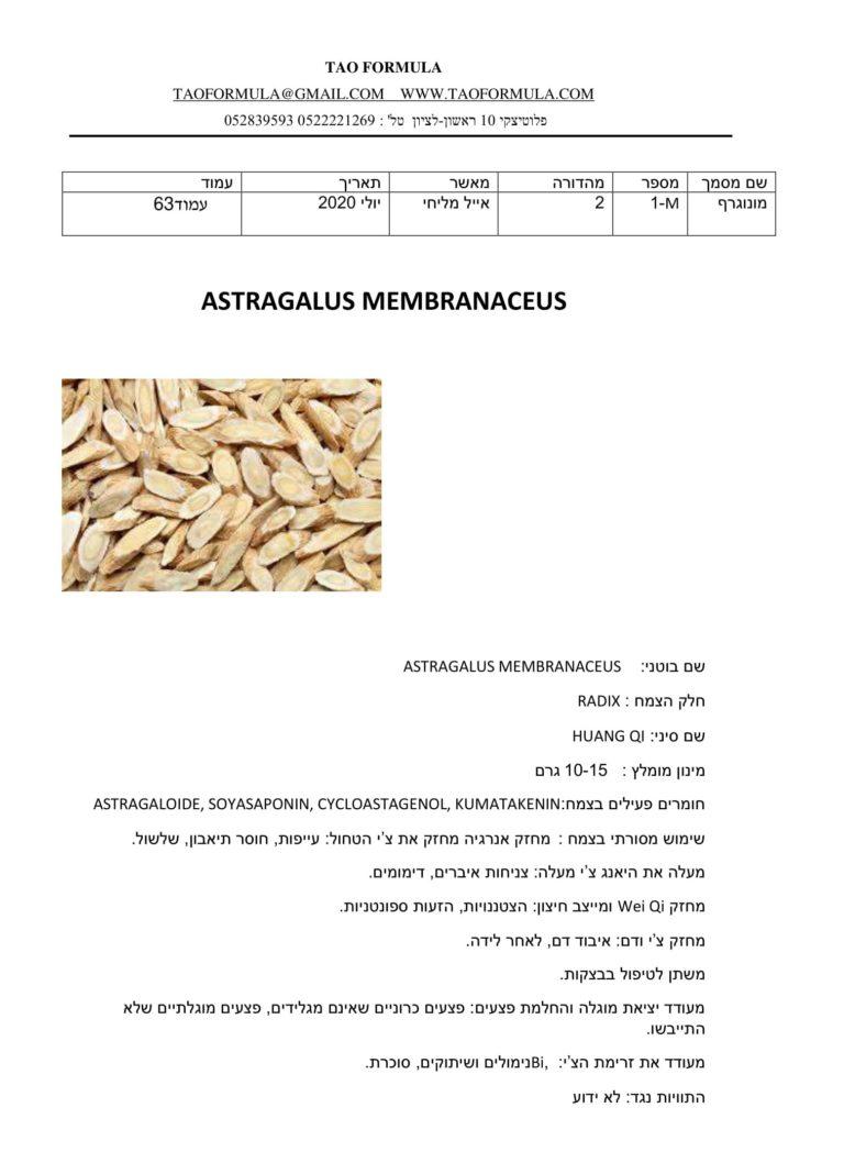 ASTRAGALUS MEMBRANACEUS 1