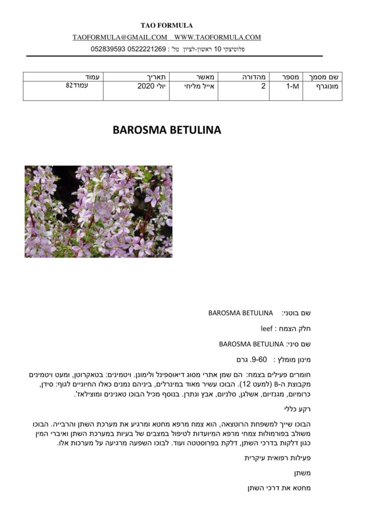 BAROSMA BETULINA 1