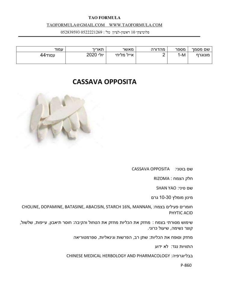 CASSAVA OPPOSITA 1