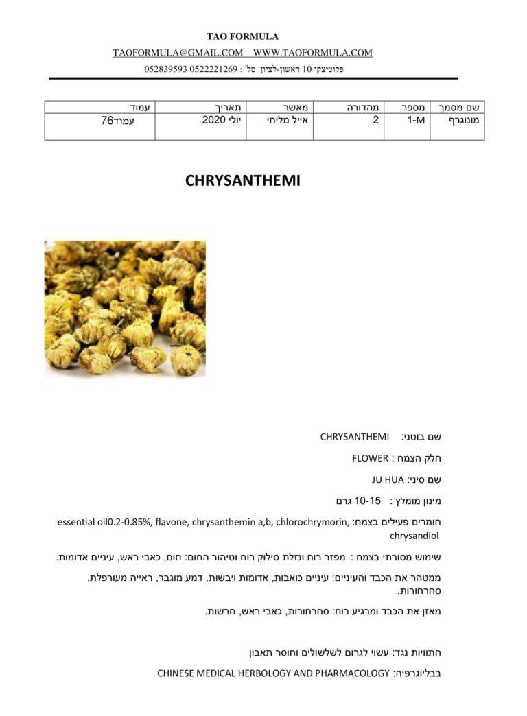 CHRYSANTHEMI 1