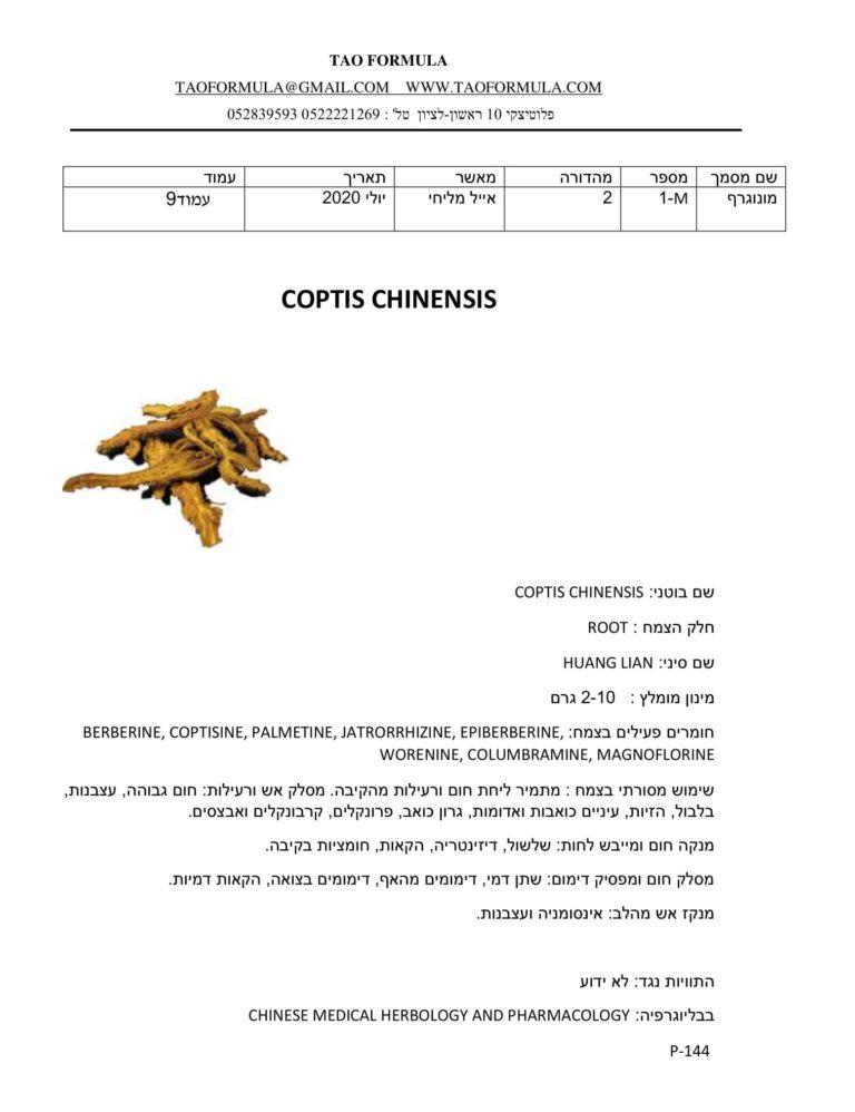 COPTIS CHINENSIS 1