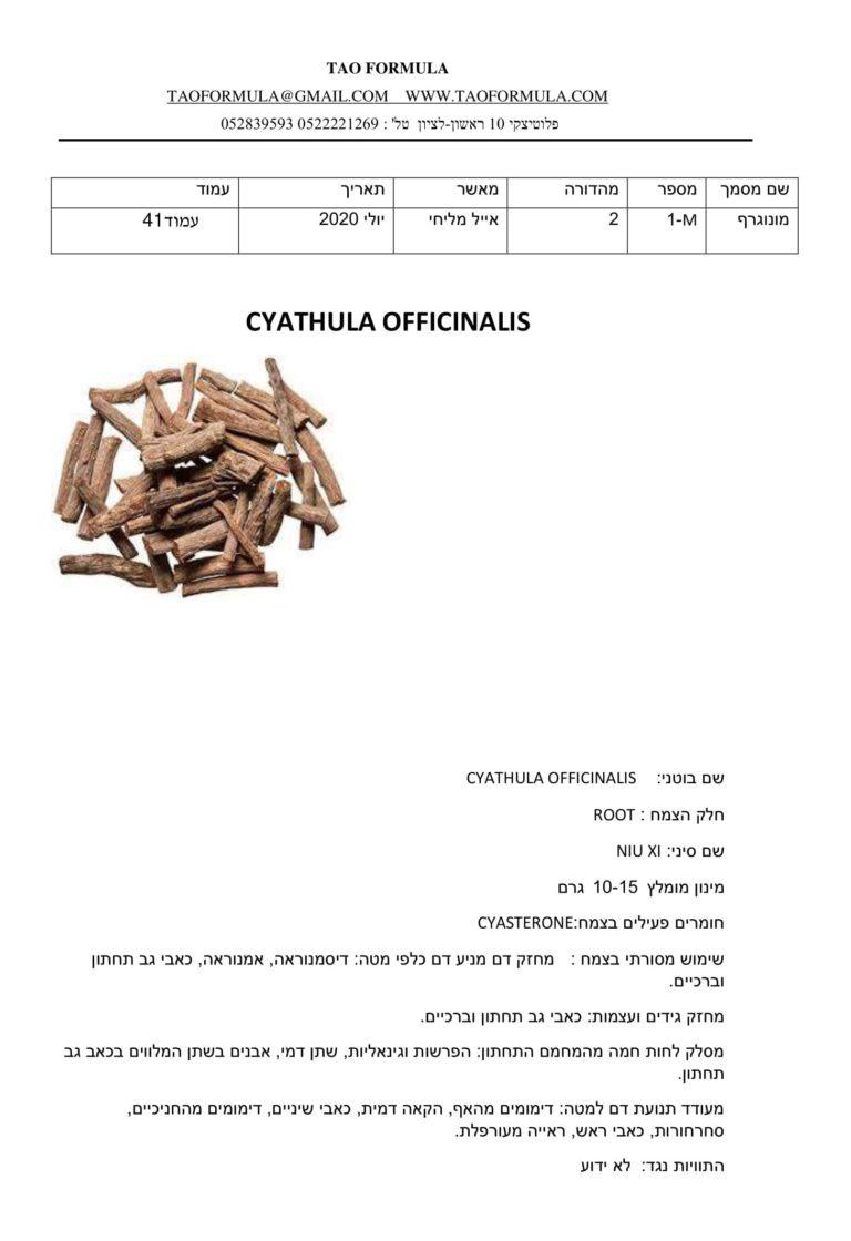 CYATHULA OFFICINALIS 1