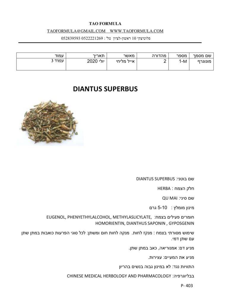 DIANTUS SUPERBUS 1
