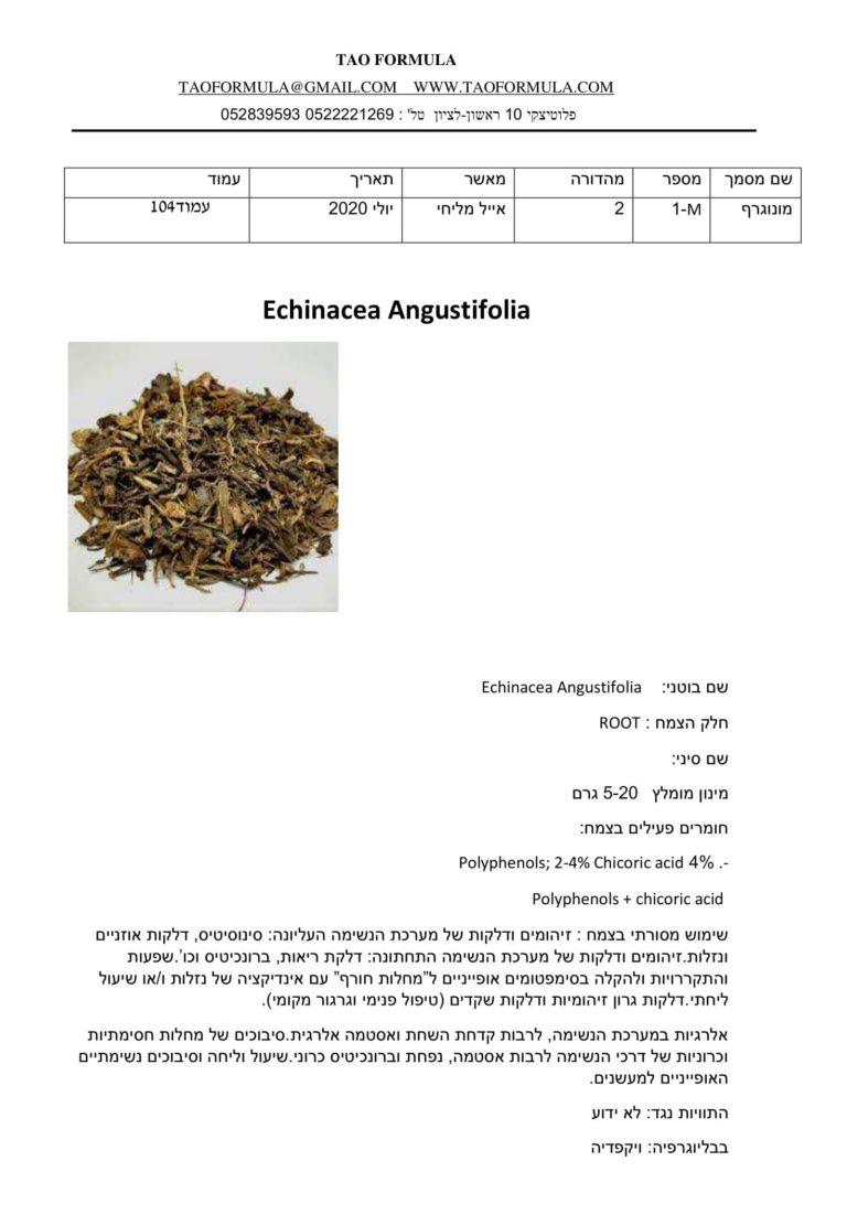 Echinacea Angustifolia 1