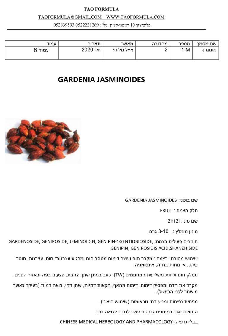 GARDENIA JASMINOIDES 1