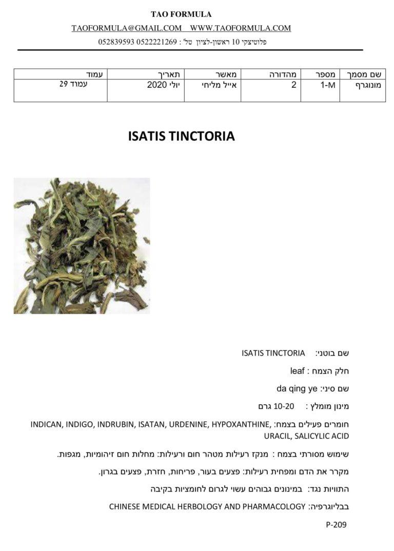 ISATIS TINCTORIA leaf 1