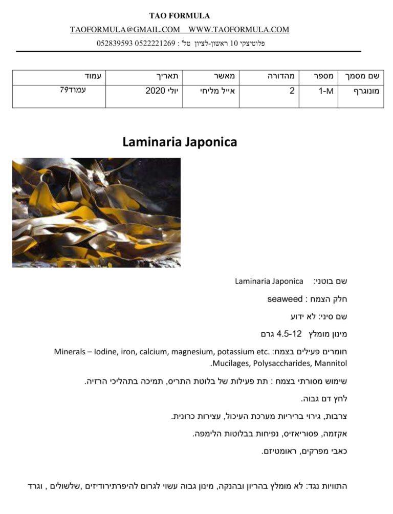 Laminaria Japonica 1