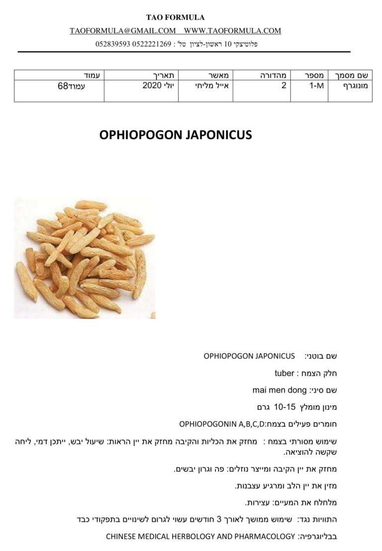 OPHIOPOGON JAPONICUS 1