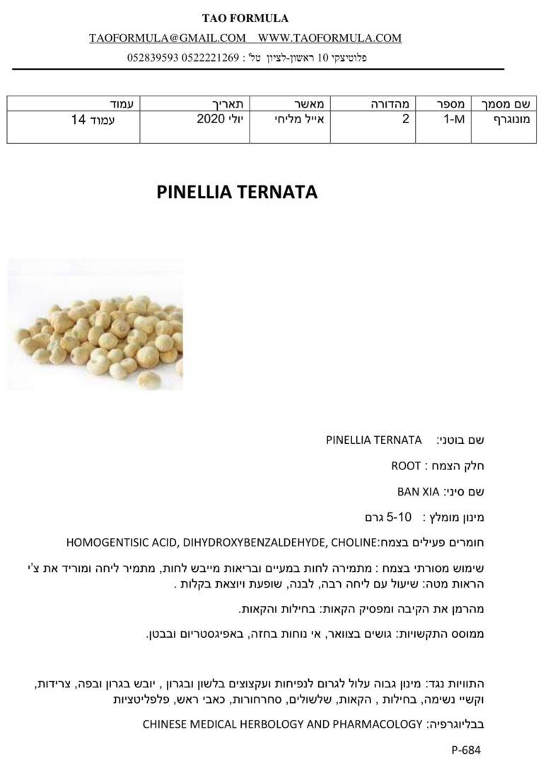 PINELLIA TERNATA 1