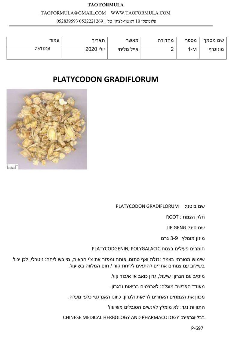 PLATYCODON GRADIFLORUM 1