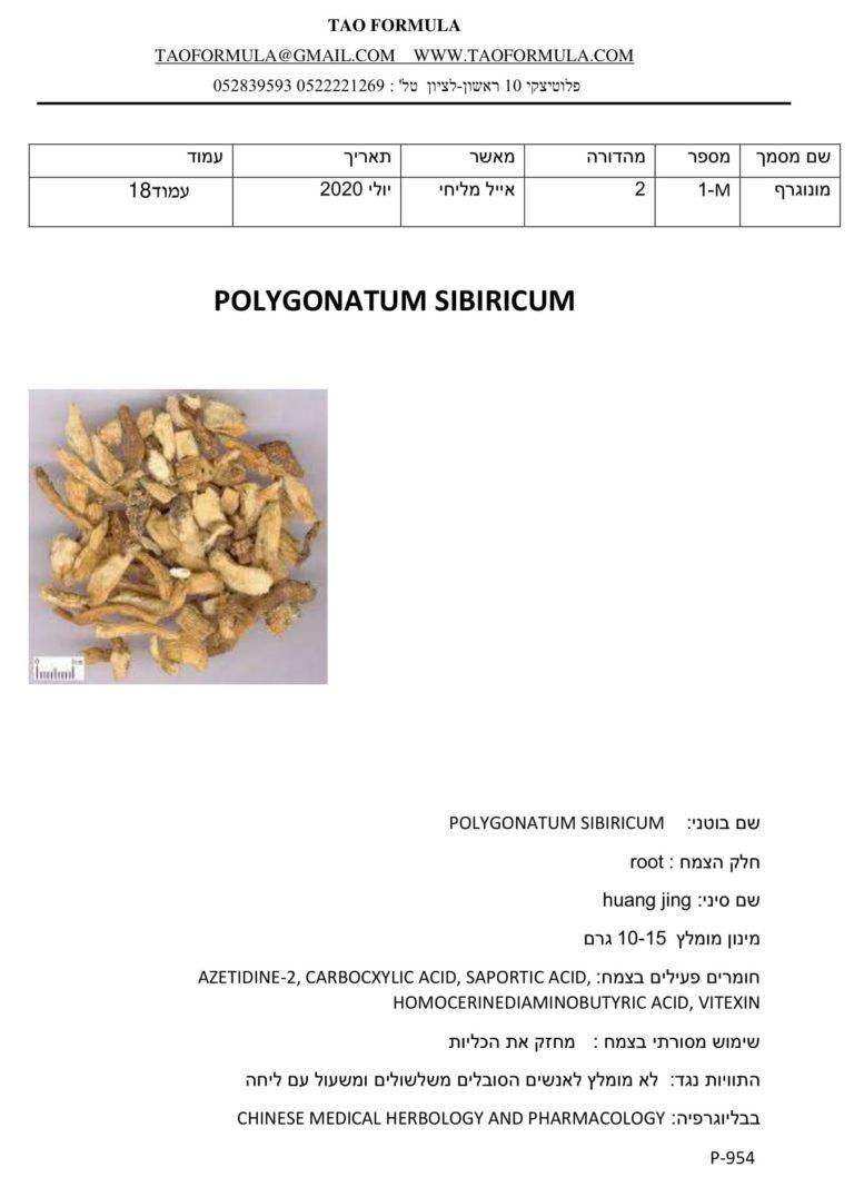 POLYGONATUM SIBIRICUM 1