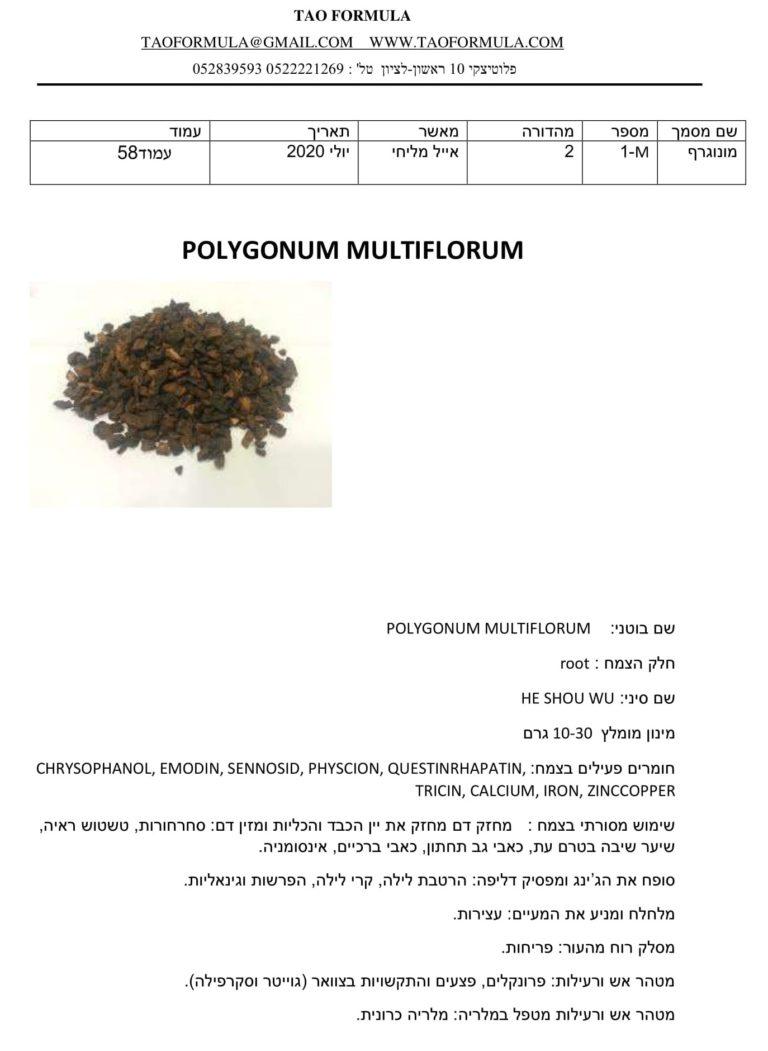 POLYGONUM MULTIFLORUM 1