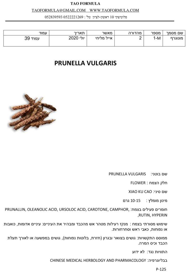 PRUNELLA VULGARIS 1