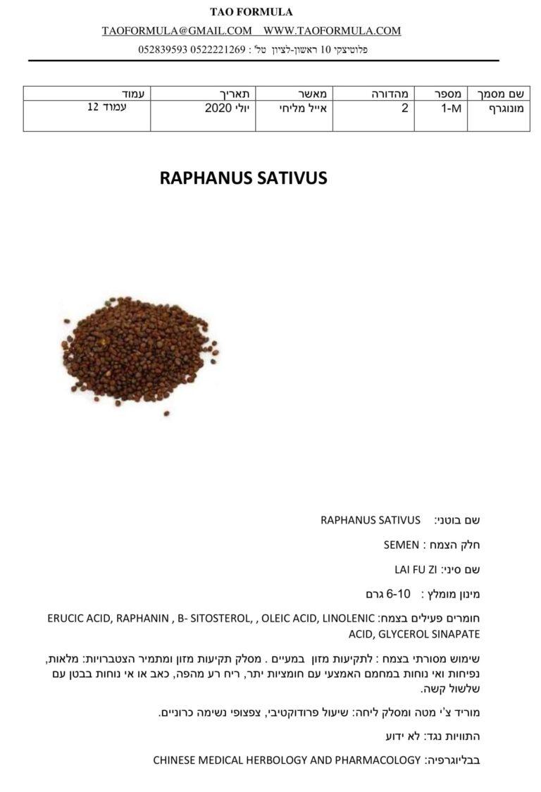 RAPHANUS SATIVUS 1