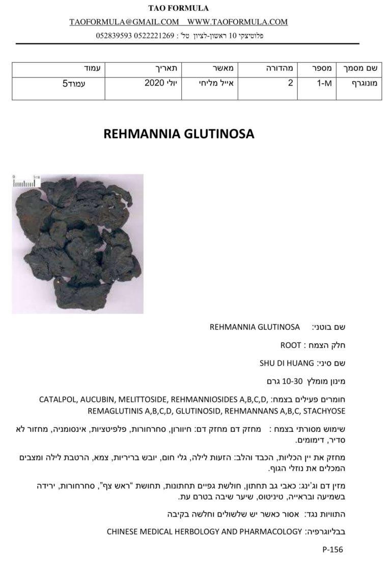 REHMANNIA GLUTINOSA 1