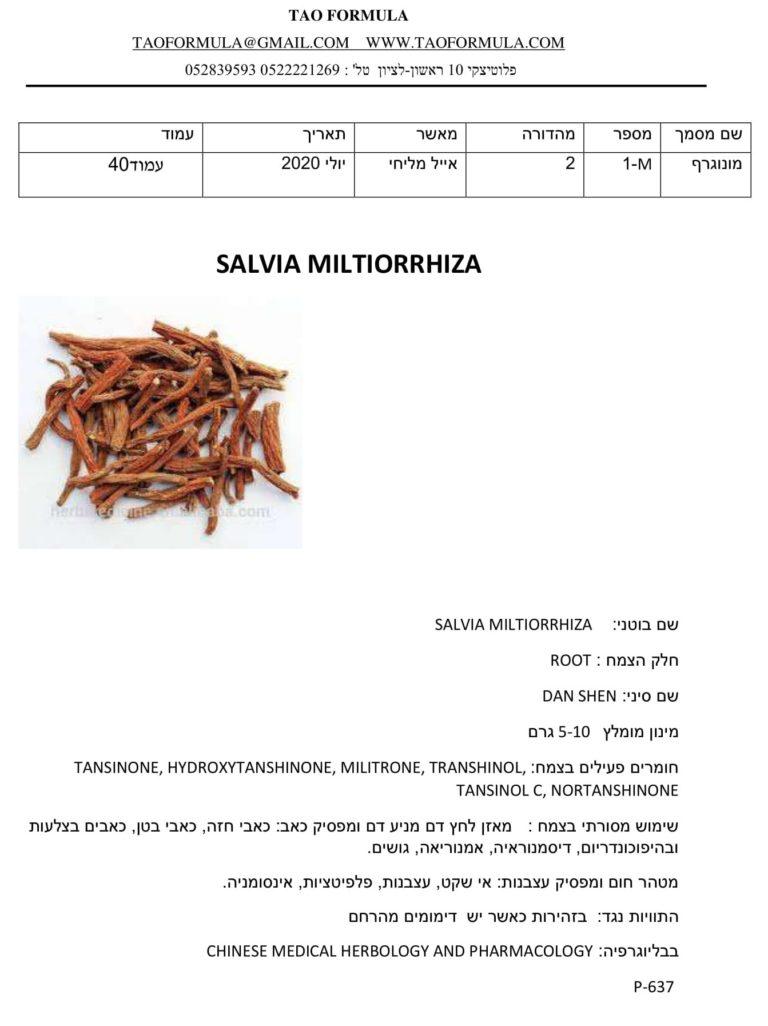SALVIA MILTIORRHIZA 1