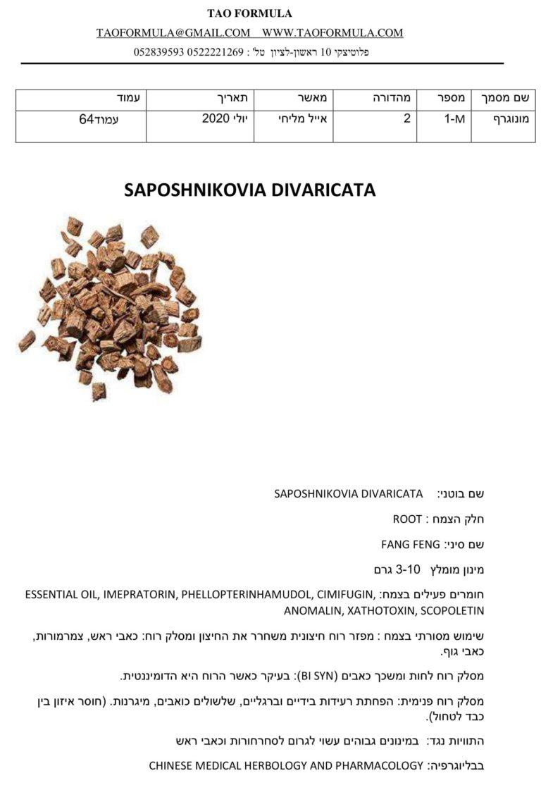 SAPOSHNIKOVIA DIVARICATA 1