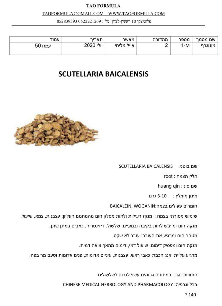 SCUTELLARIA BAICALENSIS 1