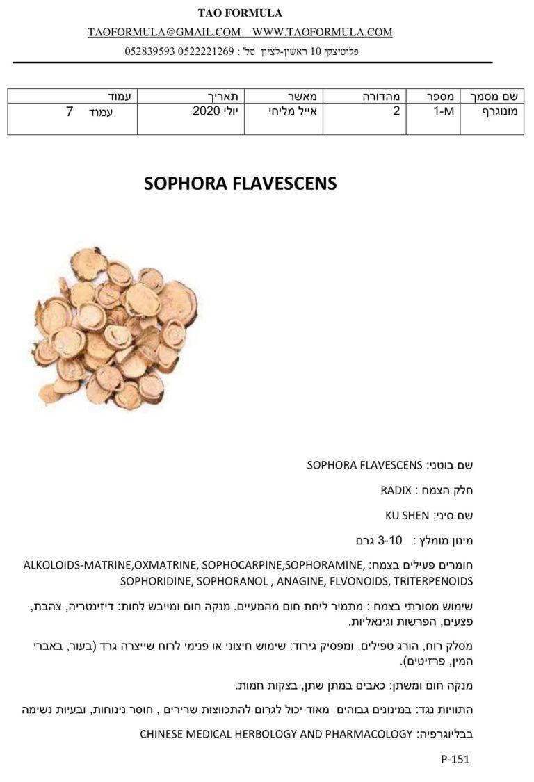 SOPHORA FLAVESCENS 1