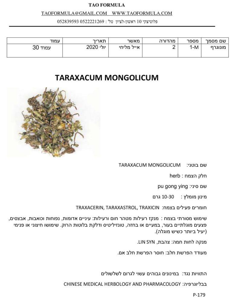 TARAXACUM MONGOLICUM 1