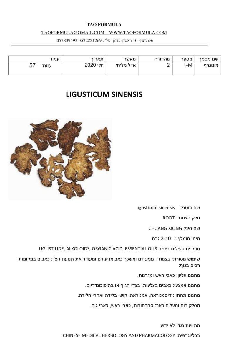 ligusticum sinensis 1