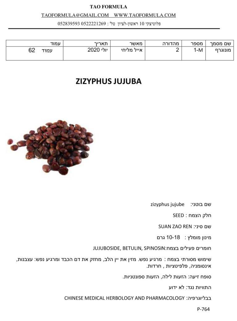 zizyphus jujube 1